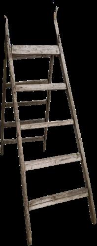 Dubbele Ladder